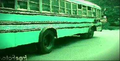 bus-factor.jpg